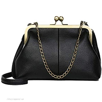 Tipiho Women Vintage Classical Kiss Lock Framed Clutch Handbag with Two Straps